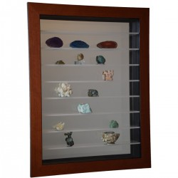 Vitrine pour collection de...